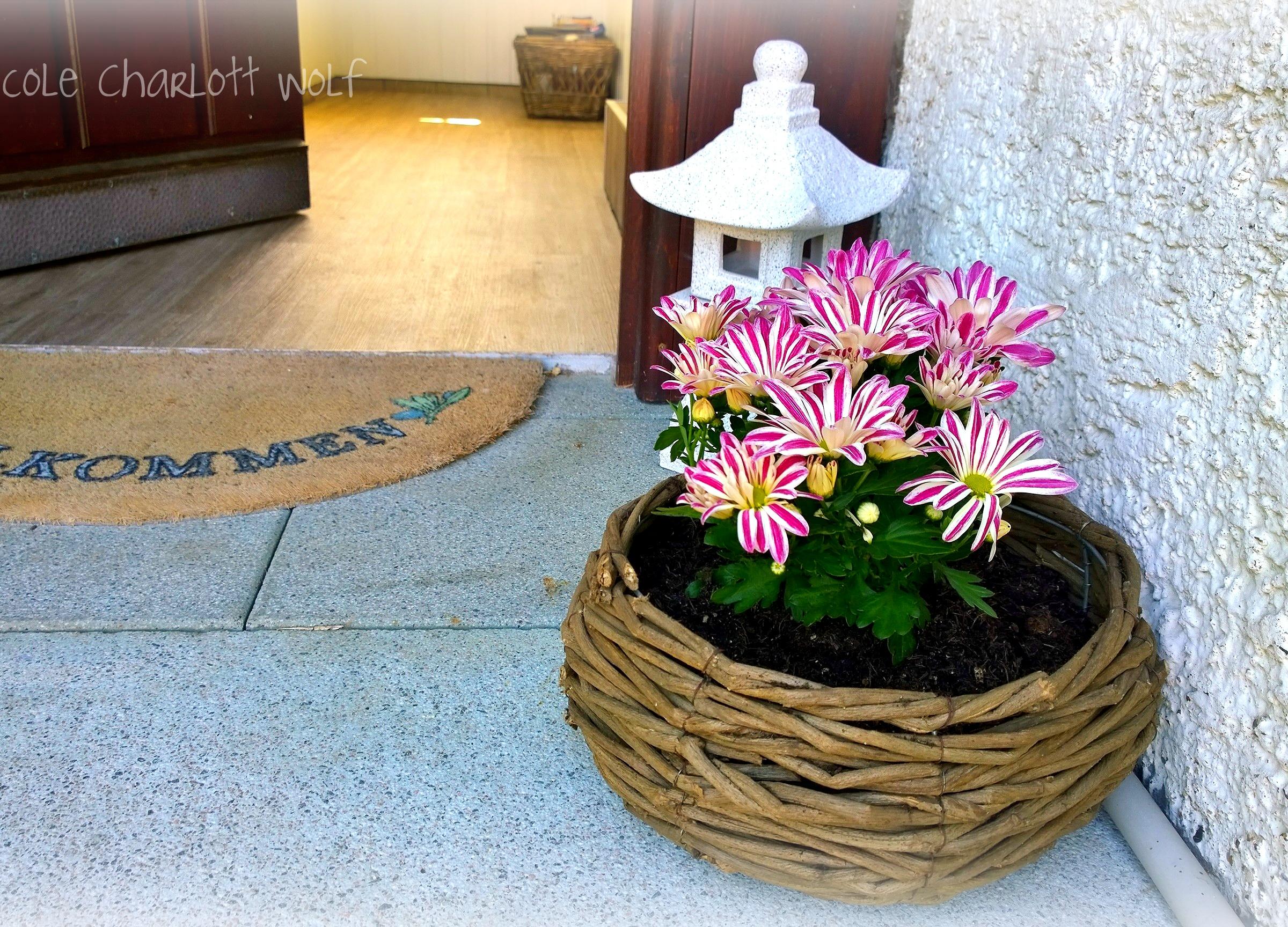 Garten, Haus Deko